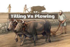 Tilling Vs. Plowing