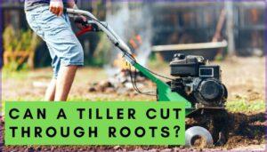 can a tiller cut through roots?